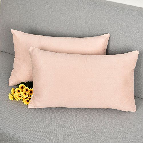 Decorative Pillow Packs : 2 Packs Luxury Oblong Velvet Cushion Covers Decorative Throw Pillow Case for Couch, by Natus ...