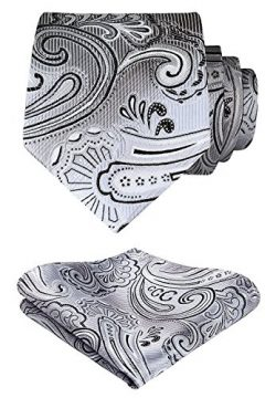 HISDERN Paisley Tie Handkerchief Woven Classic Men's Necktie & Pocket Square Set (Gray ...