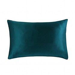 MEILIS Slip Silk Pillowcase 100 Pure Silk Pillow cases for Hair and Skin Health(Dark Green,Queen)