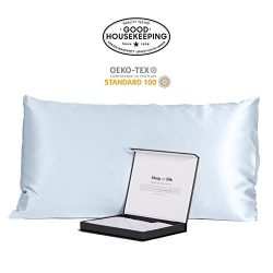 Fishers Finery 30mm 100% Pure Mulberry Silk Pillowcase Good Housekeeping Quality Tested (Lt Blue, Q)