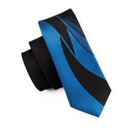 Barry.Wang Paisley Skinny Silk Necktie Casual Tie for Mens 2.2″(5.5cm)