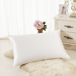 ALASKA BEAR Luxurious 25 momme Silk Pillowcase, 100% Mulberry Silk Pillow Case Cover, Standard ( ...