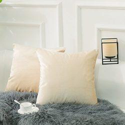 Home Brilliant 2 Packs Velvet Square Decorative Pillowcases Throw Pillow Covers Set Cushion Cove ...