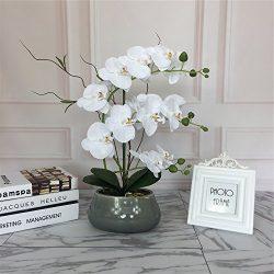 Large Lifelike Silk Orchid with Decorative Ceramic Vase,Vivid Artificial Flower Arrangement,Pott ...