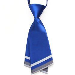 Hanerdun Womens Bowtie Ladies Pre Tied Silk Necktie Costume Accessory Gift Idea