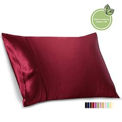 ELLESILK Natural Silk Pillowcase, 22 Momme 100% Mulberry Silk, Hypoallergenic, Machine Washable, ...