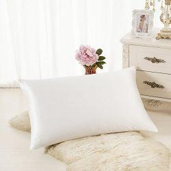 ALASKA BEAR Luxurious 25 momme Silk Pillowcase, 100% Mulberry Silk Pillow Case Cover, Queen (1,  ...