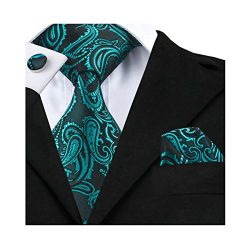 Barry.Wang Solid Teal Tie Paisley Woven Neckties Set Formal