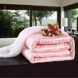 Shi Shang Pure Mulberry Silk Duvet Silk Comforter Silk Filled Comforter Silk Quilt Doona (87x95i ...