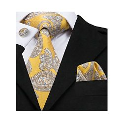 Barry.Wang Yellow Paisley Ties Mens Woven Necktie Set Formal,Yellow Paisley,One Size