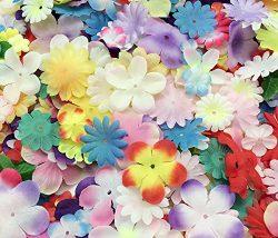 PEPPERLONELY Brand Silk Flower Petals 10 Gram, 110PC + Flower Petals, 15~50mm (9/16~2 Inch)