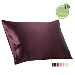 ElleSilk Mulberry Silk Pillowcase, 22 Momme 100% Mulberry Silk, Anti Ageing, Queen, Grape, 1pc