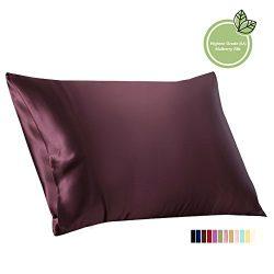 ElleSilk Mulberry Silk Pillowcase, 22 Momme 100% Mulberry Silk, Anti Ageing, Queen, Grape, 1pc
