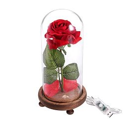 Eternal Flowers Red Silk Rose and LED Light with Fallen Petals in a Glass Dome on a Wooden Base, ...
