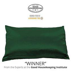 Fishers Finery 25mm 100% Pure Mulberry Silk Pillowcase Good Housekeeping Winner (Dark Green, Q)