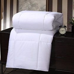Abripedic MULBERRY SILK Fiber filled Blanket, Duvet Insert, 100% Cotton Shell, 400 Thread count, ...