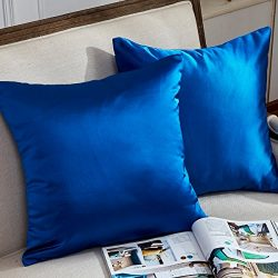 Hey Tang Pack of 2,European Decoratie Cushion Covers for Couch Square Silky Supersoft Throw Pill ...