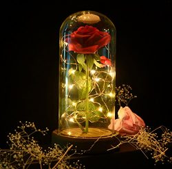 sexyrobot Beauty and the Beast Red Rose, Silk Flower with LED Light in a Glass Dome for Home Dec ...