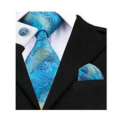 Barry.Wang Blue Paisley Ties Silk Necktie Set Wedding Business