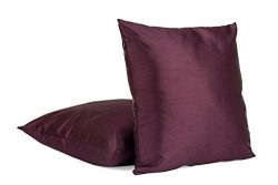 Solid Color Faux Silk 20″ X 20″ Square Decorative Cushion Cover Throw Pillow Cover,  ...
