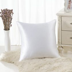 ALASKA BEAR 100% Mulberry Silk Throw Pillowcase,Hypoallergenic, 19 Momme, 600 Thread Count, Squa ...