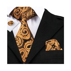 Dubulle Ties for Men Tie with Pocket Square Set Orange Paisley Necktie Silk Woven Neckties Jacqu ...