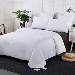 LILYSILK Summer Silk Comforter With Cotton Shell 100% Silk Duvet Cal.King 110×96 Inches