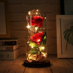 Beauty and The Beast Rose,Artificial Silk Rose Flower with Led String Lights,Macthing Dry Flowe ...