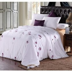 Soft Silker Silk Comforter 100% National Standard Long Mulberry Silk Filled All Season King