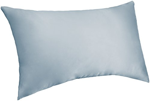 Pinzon Mulberry Silk Pillowcase – Standard, Light Blue