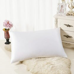 ALASKA BEAR Luxurious 25 momme Silk Pillowcase, 100% Mulberry Silk Pillow Case Cover, King(1, Pe ...