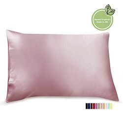 ElleSilk Silk Pillowcase for Skin, 22 Momme Premium Quality Mulberry Silk Cover, Anti Bed Head,  ...