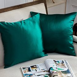 Hey Tang Pack of 2, European Silky Cool Soft Soild Decorative Square Throw Pillow Covers Set Cus ...