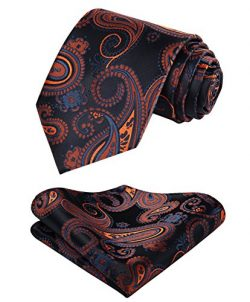 HISDERN Paisley Floral Tie Handkerchief Wedding Party Woven Classic Men's Necktie & Po ...