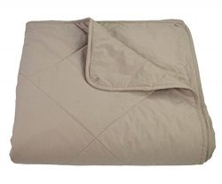Empress Home Washable Silk Filled Comforter – King- Taupe