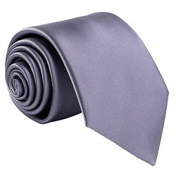 Fortunatever Classical Men's Solid Necktie With Gift Box (Gray)