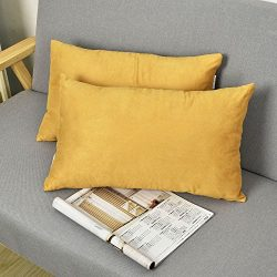 2 Pieces Luxury Velvet Oblong Throw Pillow Covers Cushion Cover for Sofa by Natus Weaver , 12 &# ...