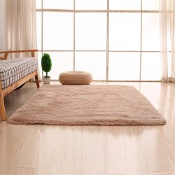 Carpets, CAMAL Soft Fluffy Silk Wool Carpet Suitable for Living Room Bedroom and Dining Room (80 ...