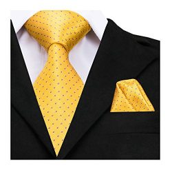 Dubulle Yellow Silk Ties Big Long Tie for Men Fashion Polka Dot Necktie Pocket Square