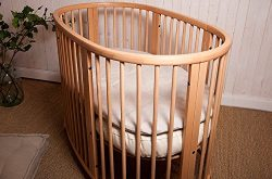 Home of Wool/Wool-Filled Topper/STOKKE Sleepi Bed-size/Chemical-free 2″ Pillowtop/Non-Toxi ...