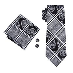 Barry.Wang Formal Ties Black Grey Neckties for Men Set Paisley Style