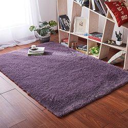 Softlife Soft Velvet Silk Area Rugs,Simple Style Shaggy Carpet Fashion Color Bedroom Mat for Gir ...
