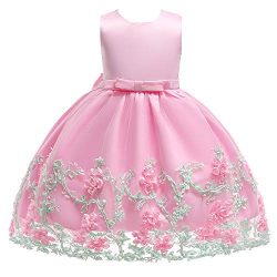 SINDE Party Dresses Girls Silk Chiffon Bow Tie Baby Tutu Lace Ball Gown Wedding Sleeveless Flowe ...