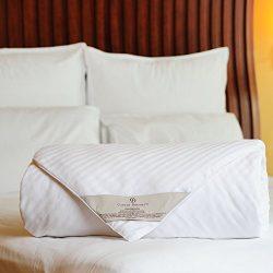 CUDDLE DREAMS Silk Comforter for Spring Summer, 100% Long-Strand Silk Filling, Detachable Design ...