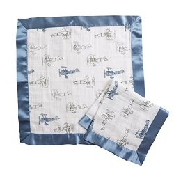 Aden by Aden + Anais Issie Security Blanket, Super Soft 100% Cotton Muslin, 2 Pack, Sky High