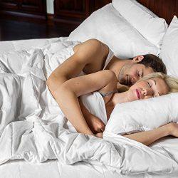 SMARTSILK Comforter (Twin) | All-Natural Silk Filled Luxury | Soft Cotton Finish | Certified Ast ...
