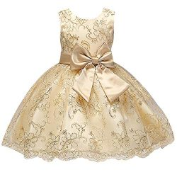 SINDE Embroidered Bridesmaid Girl Dress Sleeveless Elegant Tulle Bow Tutu Toddler Flower Dresses ...