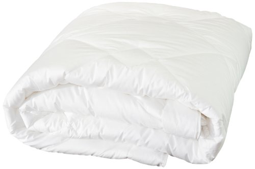 Highland Feather Manufacturing 25-Ounce Dreamtime Mulberry Silk Comforter, Twin, White