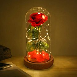 Beauty and Beast Roses, Dream Flower Red Silk Rose with LED Light and Fallen Petals on a Glass D ...