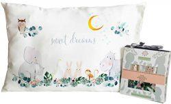 Toddler Pillowcase 100% Natural Silk – Soft, Hypoallergenic, Kids Pillow Cover 13×18  ...